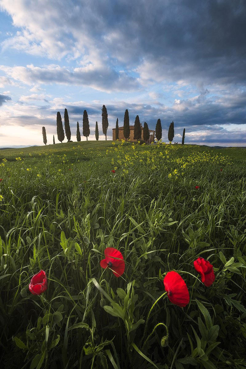 tuscany photography workshop andrea livieri andy mumford pienza fujifilm